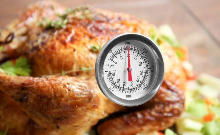 Meat Cooking Thermometer for Oven